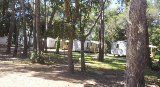 Location Mobil-Home Provence : 4 à 6 personnes