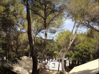 Location Tente Kenya