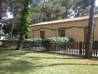 Location de studios pour 4 personnes - Côté Forêt